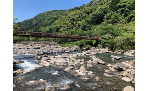 釣り人の皆さま、清流・安田川の年間遊漁券が登場しました!