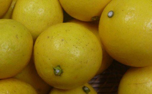 室戸の人気柑橘「小夏」の訳あり1.8㎏です。