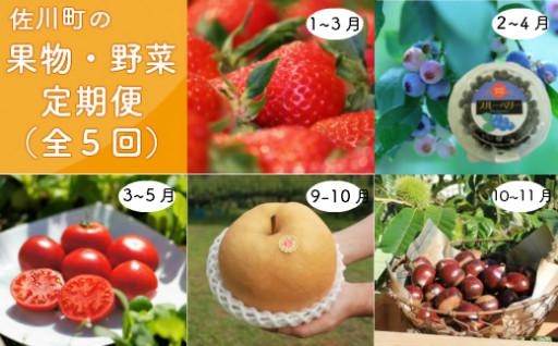 佐川町の旬のフルーツ・野菜を旬の時期にお届けする定期便!