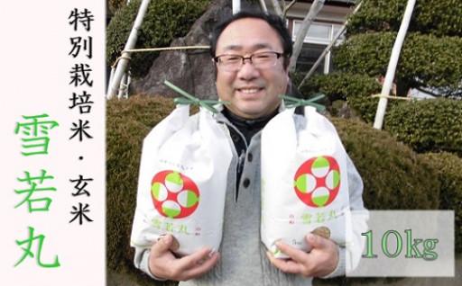 小野寺さんの【玄米】雪若丸10kg!数量限定で受付中!