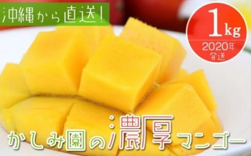 【2020年発送】かしみ園の「濃厚マンゴー」1kg