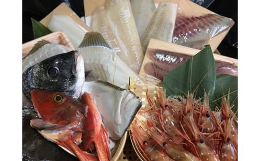 再開しました!庄内浜直送旬の海鮮おまかせセット