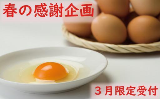 【春の感謝企画】秋田比内地鶏たまご60個