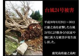 平成30年台風24号
