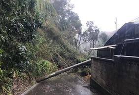 令和元年台風21号に伴う大雨