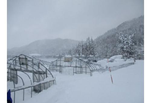 秋田県東成瀬村 令和3年豪雪災害 災害支援・寄付 ふるさとチョイス災害支援