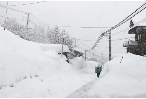 新潟県小千谷市 令和2、3年豪雪災害 災害支援・寄付|ふるさとチョイス災害支援
