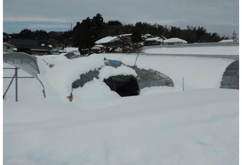 富山県小矢部市 令和3年富山県小矢部市 雪害支援 災害支援・寄付 ふるさとチョイス災害支援