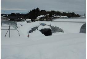 令和3年富山県小矢部市 雪害支援