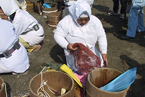 海女漁具の購入支援