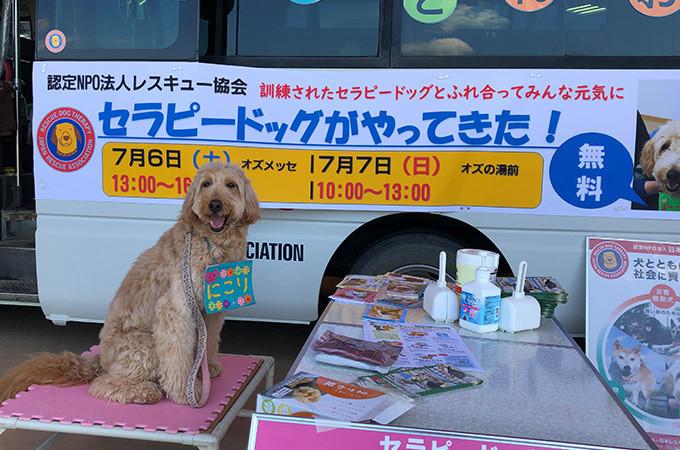 日本有数の災害救助犬・セラピードッグの活動拠点づくり