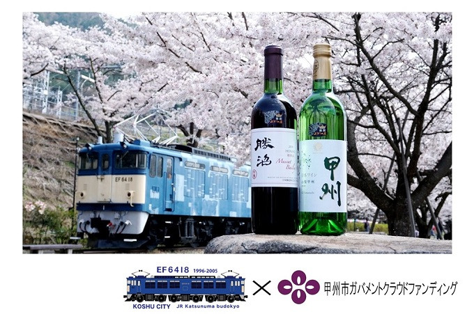 GCF2130-勝沼ぶどうの丘推奨ワイン2本セット(GCF専用)