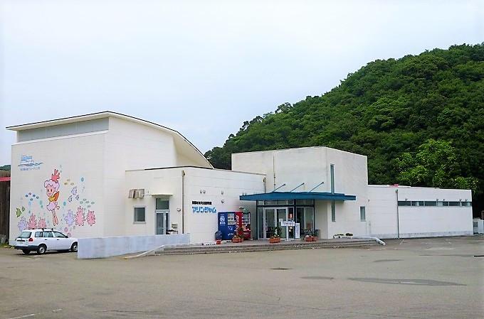 ※海洋自然博物館マリンジャム