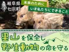 里山を保全し野生動物の命を守る~未来のためにいま私たちにできること~