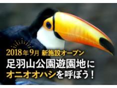 足羽山公園遊園地の新しい施設にオニオオハシを仲間入りさせたい!