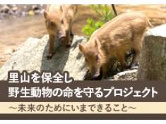 【第二弾】里山を保全し野生動物の命を守る~未来のためにいま私たちにできること~
