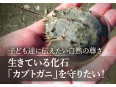 笠岡市が誇る天然記念物を子どもたちに知ってほしい!