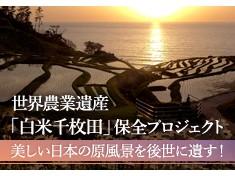 世界農業遺産・国指定文化財(名勝)「白米千枚田」を後世に遺したい!