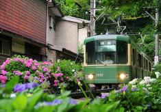 【引き続き寄附受付中!】鎌倉市内経済活性化プロジェクト!新型コロナウイルスの影響に負けず、鎌倉の賑わいを未来へ繋ぎたい