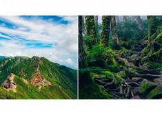 【第2弾】多くの登山愛好家に愛されている八ケ岳や車山高原の登山道等を整備して、安全な登山ができるようにしたい!