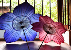 和傘を守る! 岐阜、そして日本の和傘の将来を担う若い職人を育てます