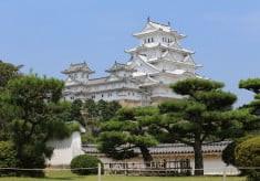 世界遺産「姫路城」保存継承プロジェクト ~【新型コロナウイルス感染症対策】姫路城を人類の宝として後世に残すためのプロジェクト ~