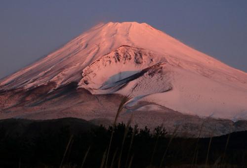 四季折々の美しい富士山を映したカレンダーをつくりたい