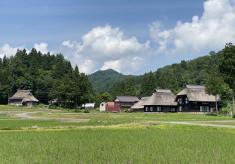 日本の原風景!かやぶき屋根の風景を未来へ紡ぐ!