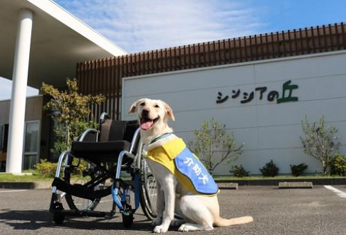 犬を通して笑顔の輪を広げたい!【日本介助犬協会の活動支援】