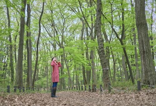 「残したい雑木林循環プロジェクト」 粉砕機を購入して雑木林を守りたい