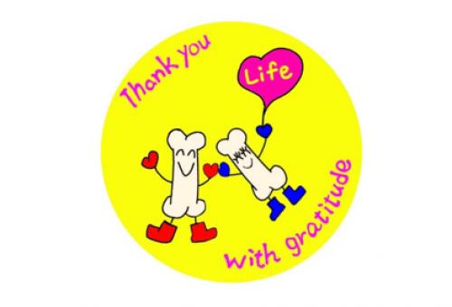 みんなで支える骨髄移植~1人でも多くの方の命を救うために~