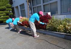 花壇へ彩り豊かな花を植えて伊勢市を訪れる観光客の皆さんのおもてなしをしたい!!