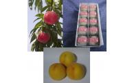 献上桃の郷桑折町】 桃とお菓子セット受付中
