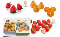 寒い冬も香川県産フルーツで。