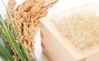 新米や干物など、食欲の秋におすすめ!