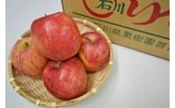 期間限定 穴水産葉とらんりんご(ふじ)