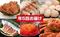【12月限定増量中】市場厳選海鮮類を計5回お届け