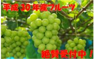 ☆平成30年産フルーツ受付中☆