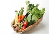 おいしい【野菜の詰め合わせ】あります