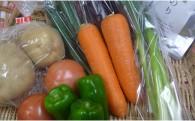室戸の新鮮野菜7種類と【おまけ】をお届けします。