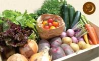 新鮮お野菜の詰合せセットが追加されました!!