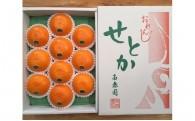 ★今が旬!柑橘の大トロ「せとか」 BS04★