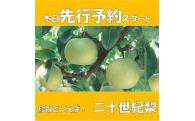 倉吉市フルーツ先行予約(第3弾)