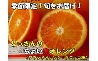 【ブラッドオレンジ】とっさんのちょい赤オレンジ