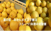 期間限定の「柑橘セット」の返礼品が登場!