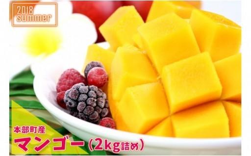 【2018年夏発送】本部町産マンゴー 2kg詰め