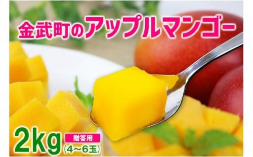 金武町のアップルマンゴー◆贈答用◆約2kg