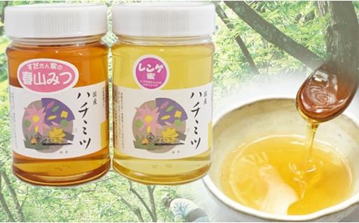 移動養蜂家 須田さんの自家採集はちみつ