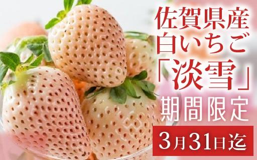 【受付終了間近!!】佐賀県産白いちご「淡雪」