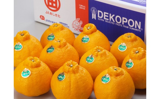 【残りわずか!】柑橘の王様 デコポン3㎏!
